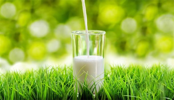 Jatcorp定增募资619万澳元 拓展中国植物肉及奶粉业务