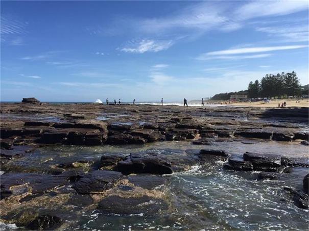 铁矿石、锂矿概念股领涨澳市材料板块  部分个股2021财年涨幅逾10倍