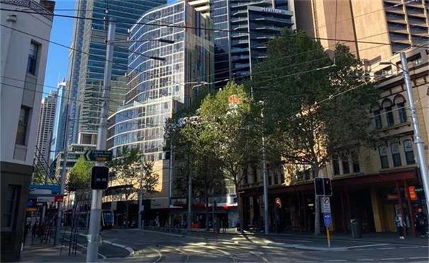 澳洲6月失业率下降至4.9%     疫情导致维州劳动时间减少