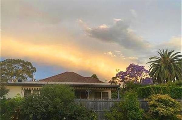 国民银行预计悉尼房价今年上涨超两成  下调明年涨幅预测