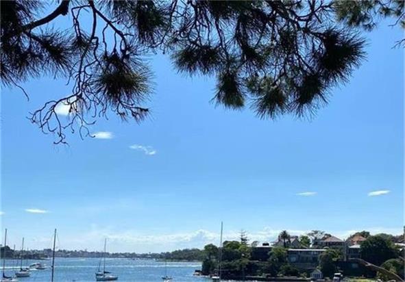 悉尼房价今年涨幅或达23%  堪培拉雄冠全澳