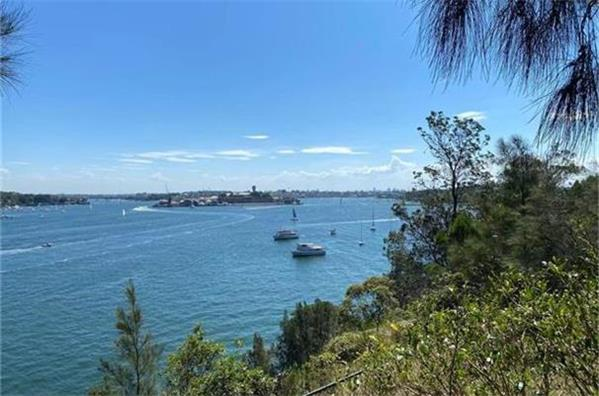 悉尼房价飞涨   周涨幅最高超过两万澳元